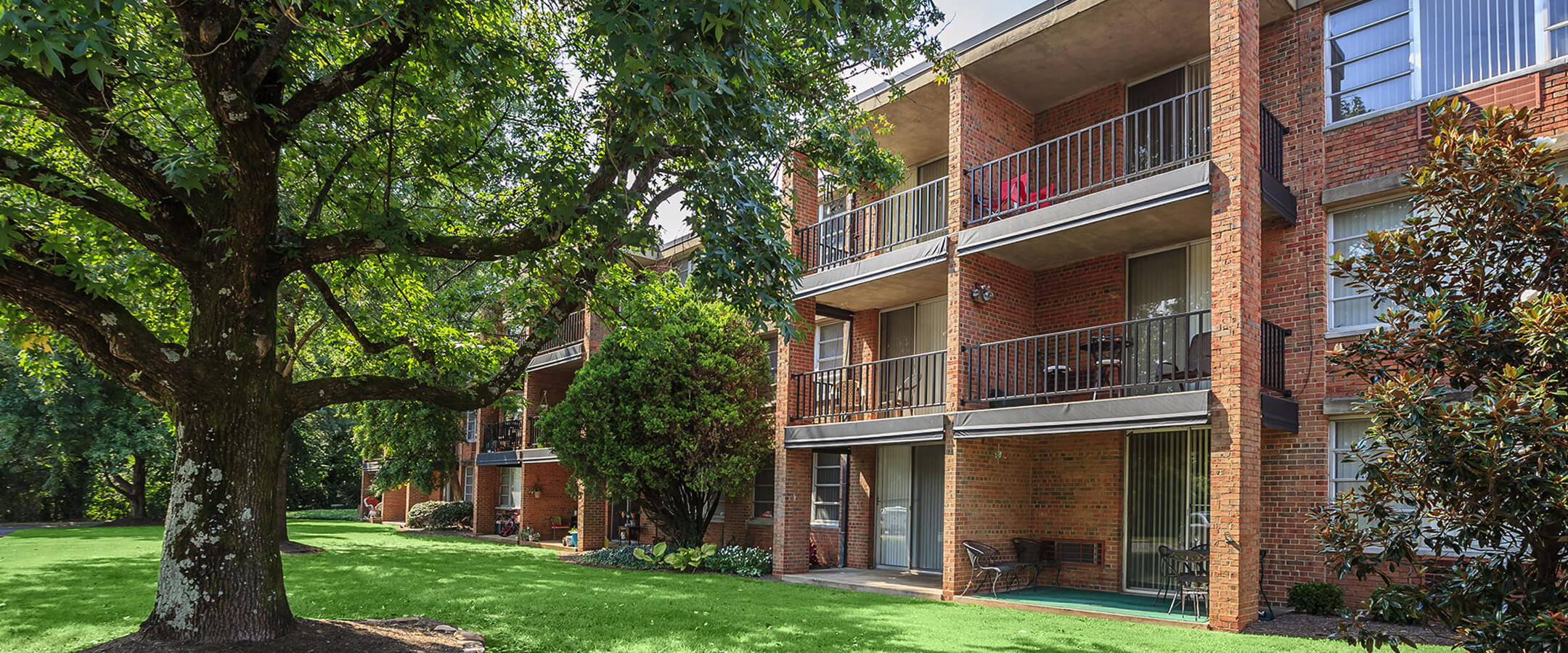 One Bedroom Apartments In Knoxville Tn 28 Images Cedar Hill Apartments Knoxville Tn